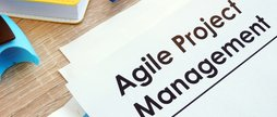 Lean-Agile Project Management Professional Award